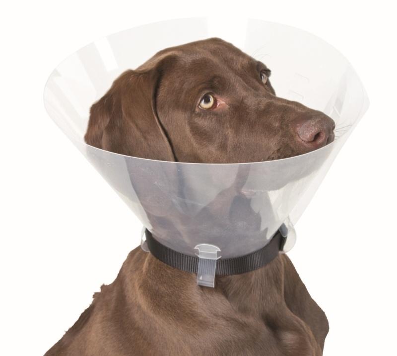 KERBL Hunde-Halskrause