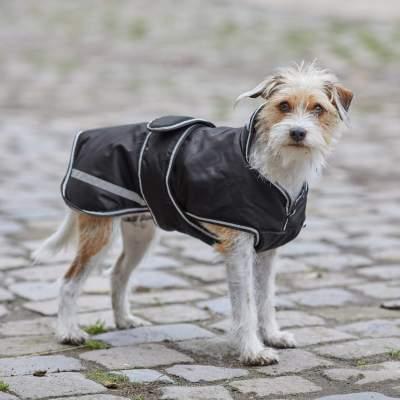 WALDHAUSEN Hundedecke Protection, 200 g