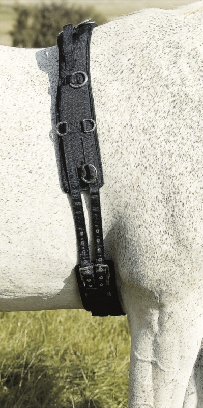 USG Longiergurt Neopren mit Handschlaufen