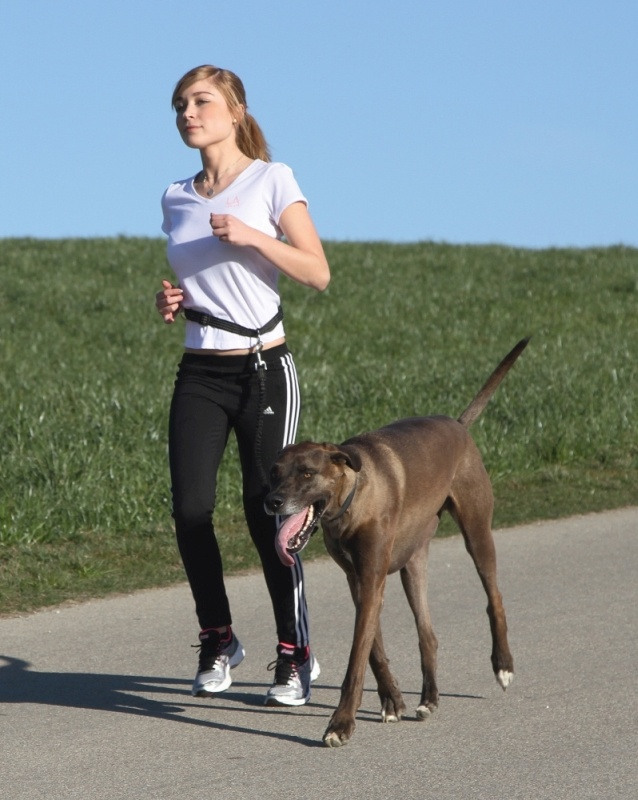 KERBL Joggingleine Active mit Hüftgurt