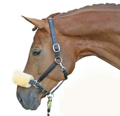 HKM Echt-Lammfell-Nasen-Genickschutz