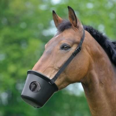 WALDHAUSEN Maulkorb, Pony