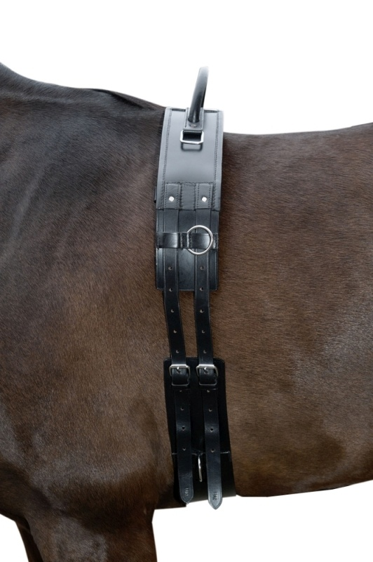 HKM Longiergurt mit Haltegriff aus Leder